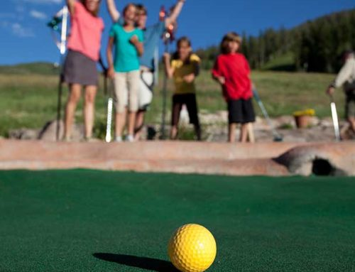 Mini Golf & Par 3