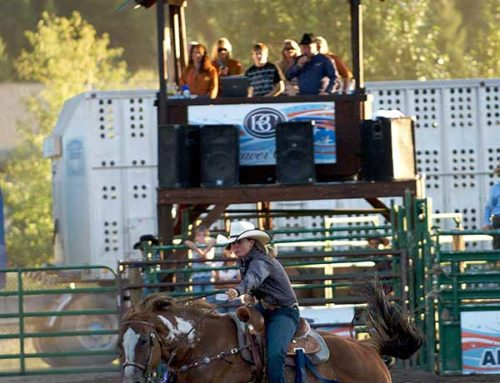 Beaver Creek Rodeo